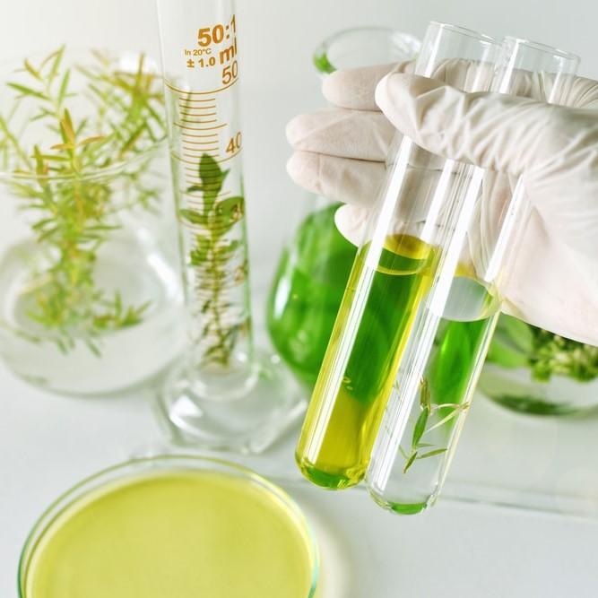 リアルビューティーケアのお約束: 超低刺激の国産化粧品・サプリメント